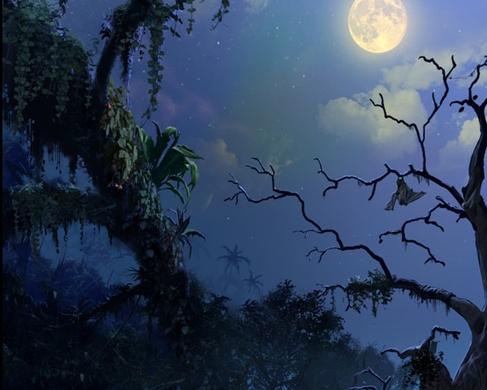 凯蒂雅露之荒林冒险下载