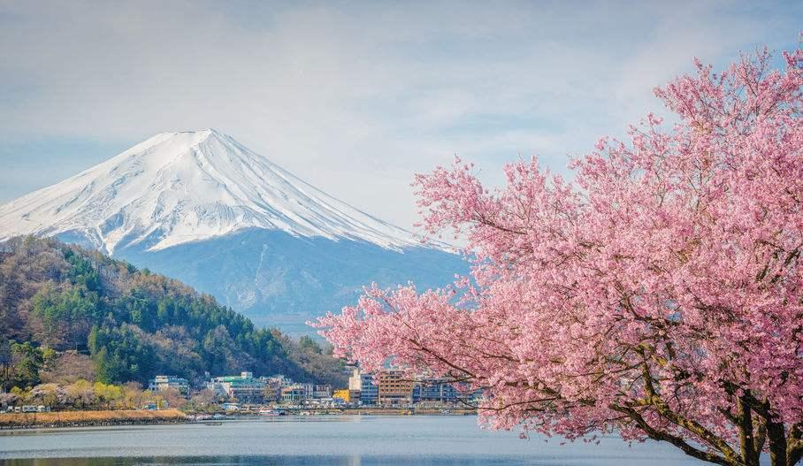 日本人存钱意愿20年来最强,民众没有将政府发放的补助花掉