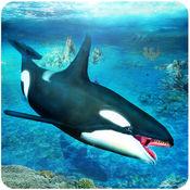 虎鲸模拟器3D
