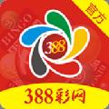 388彩网