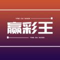 赢彩王软件