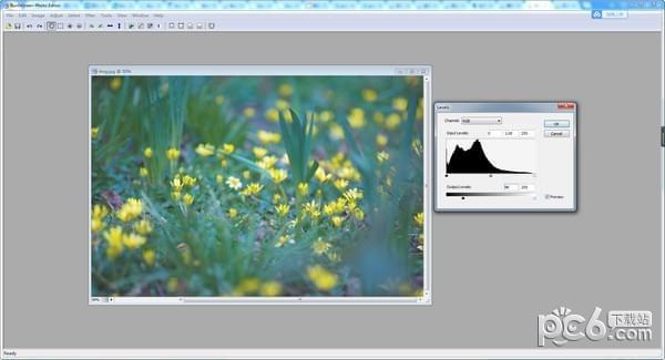 SunlitGreen BatchBlitz(图片编辑软件)下载