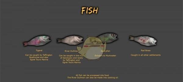 辐射4会钓鱼的定居者MOD下载