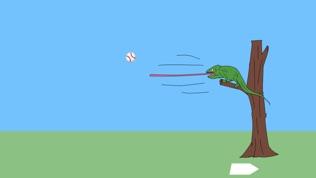 奇怪的击球练习场软件截图0