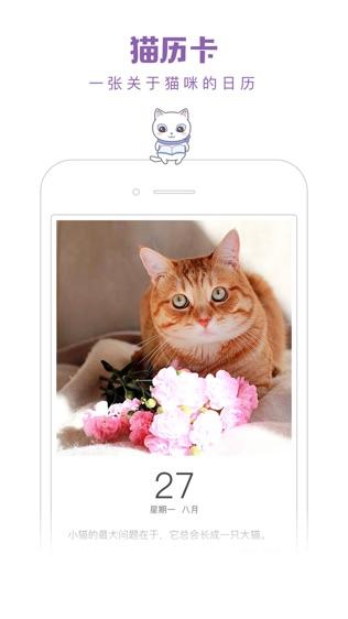 一日猫软件截图1