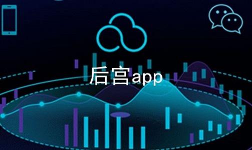 后宫app