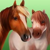 HorseWorld : 我的骏�