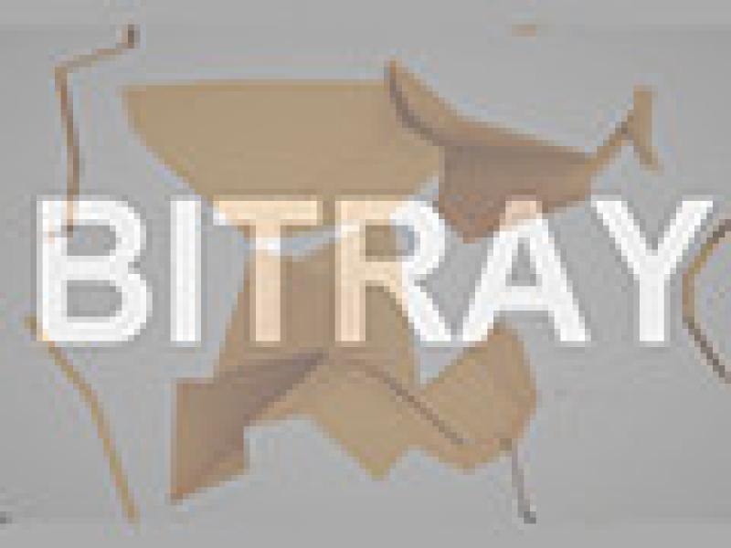 BitRay 英文版