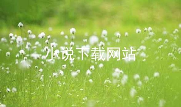 小说下载网站软件合辑