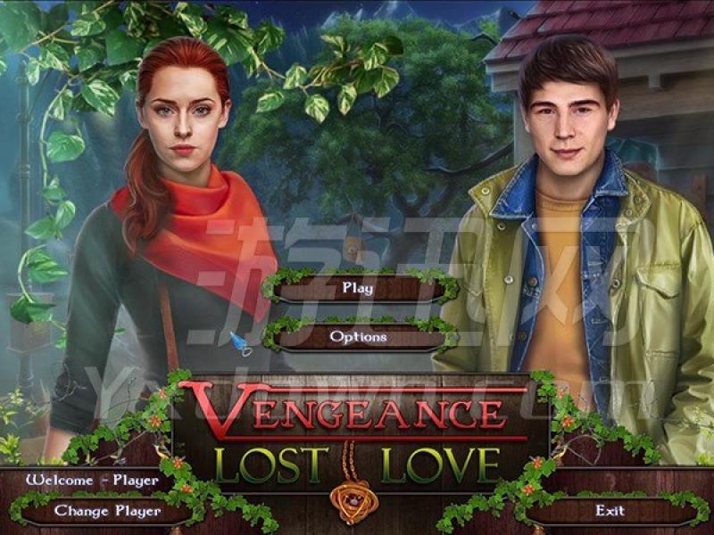 复仇:失去的爱 正式版下载