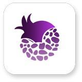 紫石榴应用商店