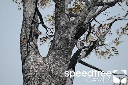 speedtree Games Indie