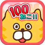 100猫咪