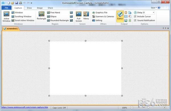 EximiousSoft Screen Capture(屏幕捕获抓取工具)
