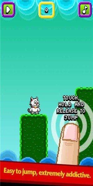 跳跃的猫咪
