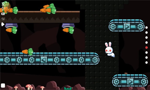 很奇怪的兔子2