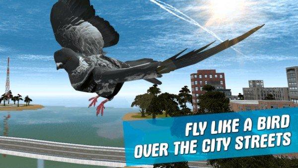 城市之鸟鸽子模拟器