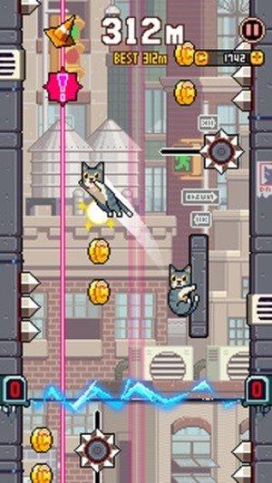 猫咪跳高高软件截图1