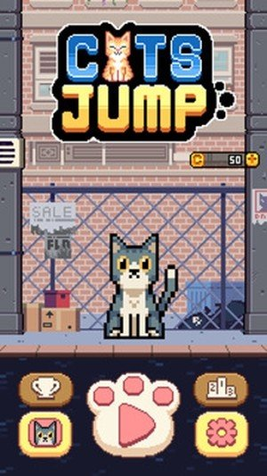 猫咪跳高高