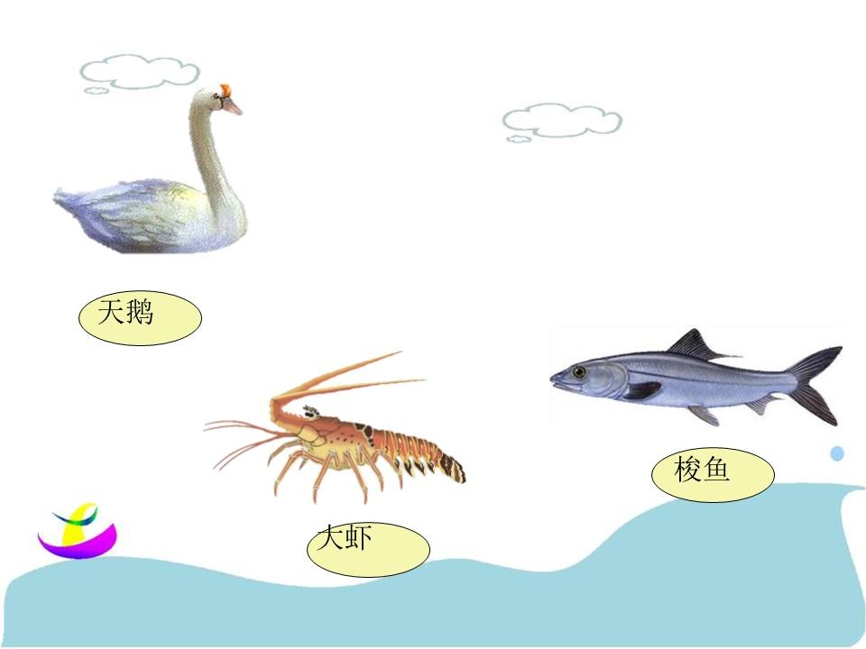 《天鹅、大虾和梭鱼》PPT课件6下载