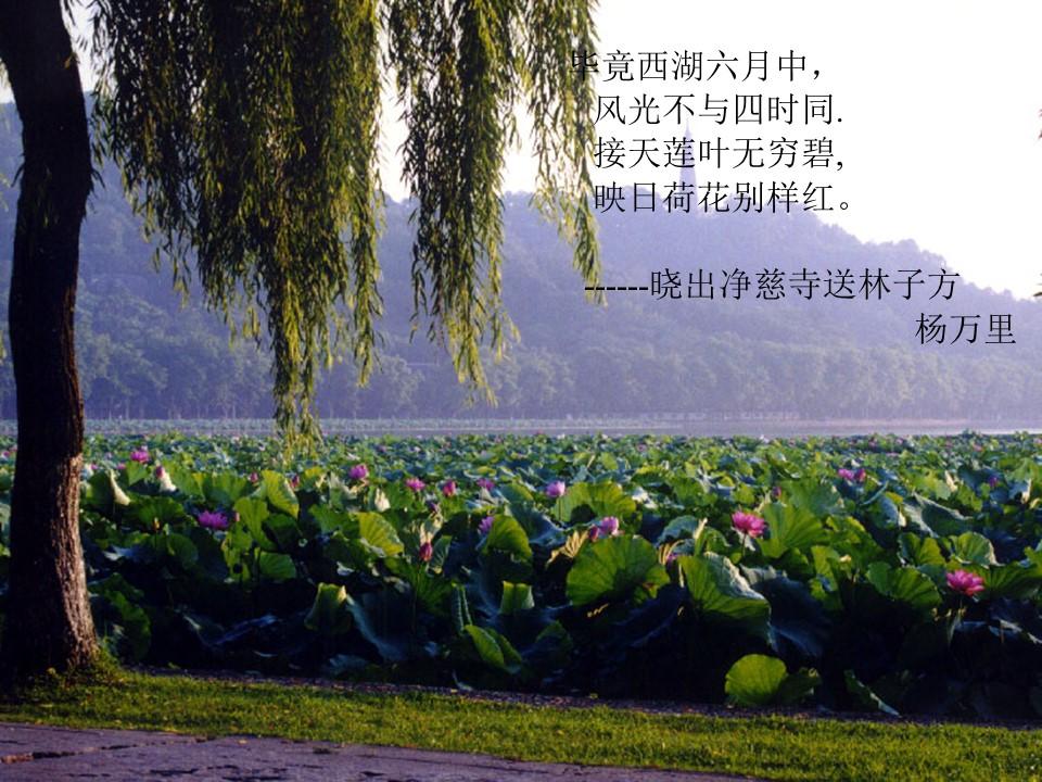 《西湖游记二则》PPT课件下载