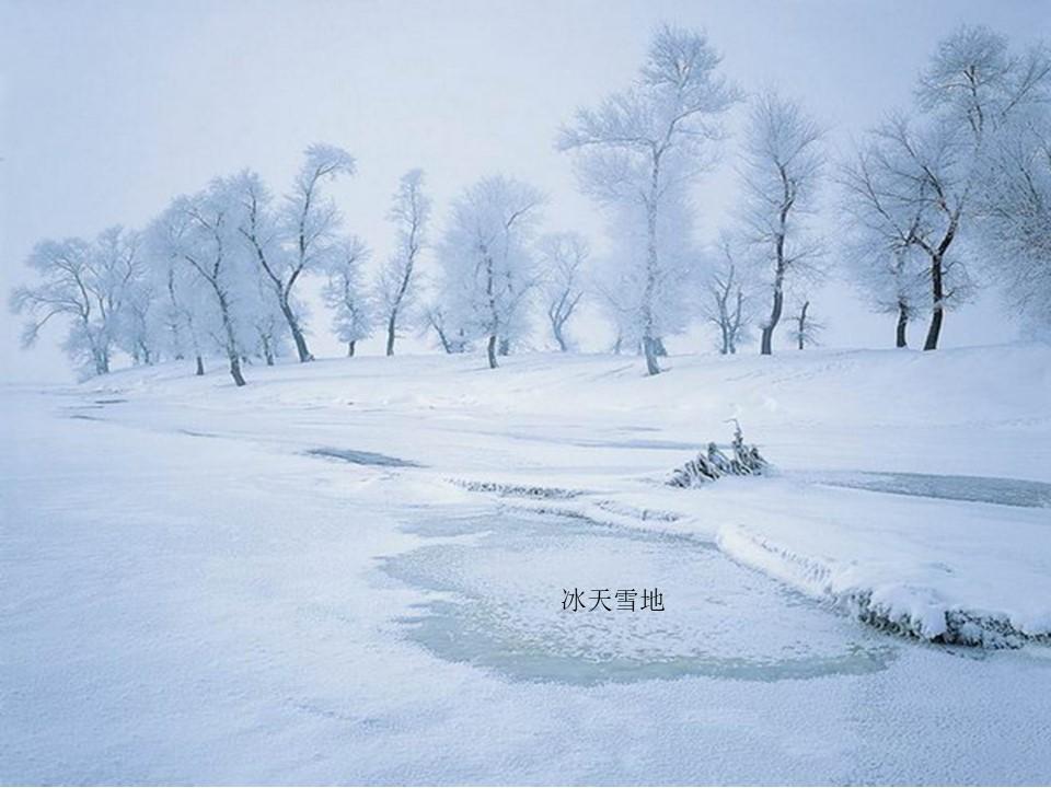 《冬天是个魔术师》PPT课件2下载