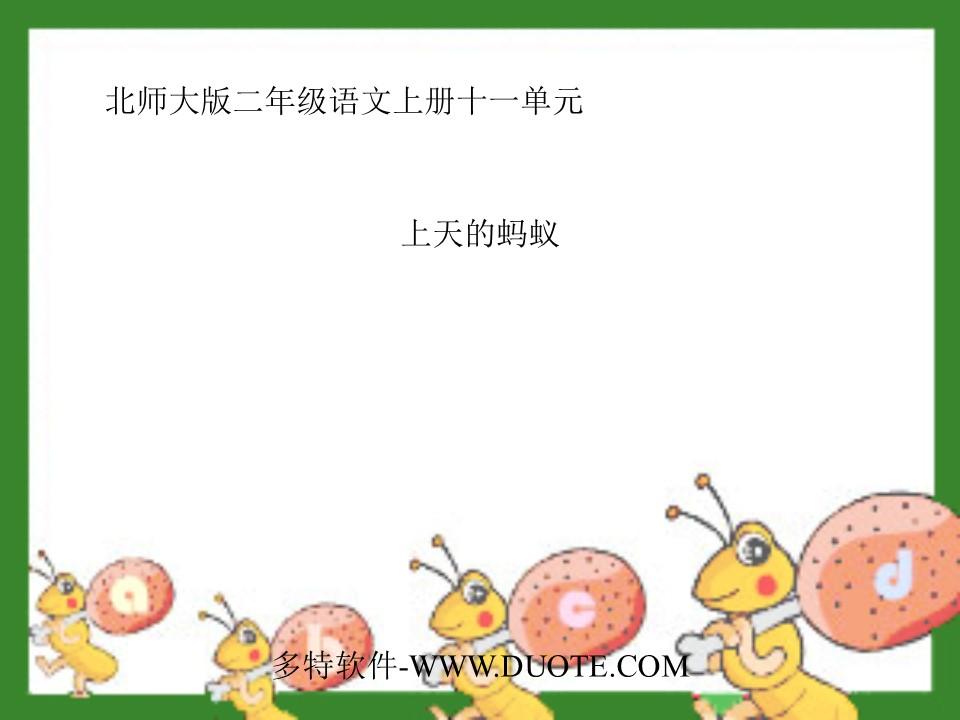 《上天的蚂蚁》PPT课件4下载