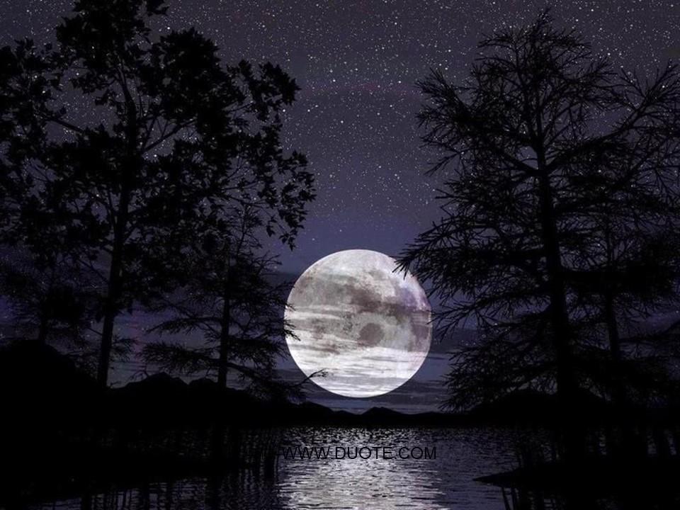 《月球之谜》PPT课件4下载