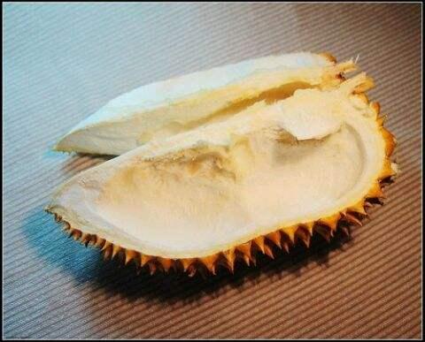 榴莲壳是属于干垃圾还是湿垃圾?榴莲壳归类分析?