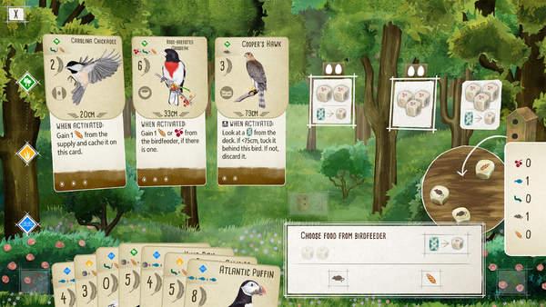 《展翅翱翔》将于今夏登陆PC/NS 寓教于乐学习鸟类知识