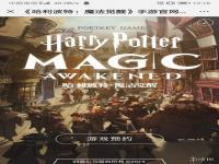 哈利波特魔法觉醒全魔杖含义大全,全魔杖含义介绍