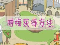 旅行青蛙中国之旅怎么让青蛙带梅花回来 具体方法