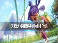 《天穗之咲稻姬》夜间材料有哪些