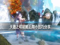 《天穗之咲稻姬》后期有什么技巧?