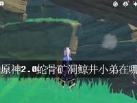 原神2.0蛇骨矿洞鲸井小弟在哪 原神蛇骨矿洞鲸井小弟位置一览