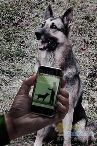 Dog Commander PRO 训狗大师下载