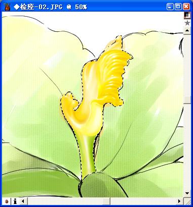 用Painter与数码板绘制百合花