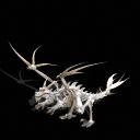 《孢子》红蝎,骨龙,绿龙作品