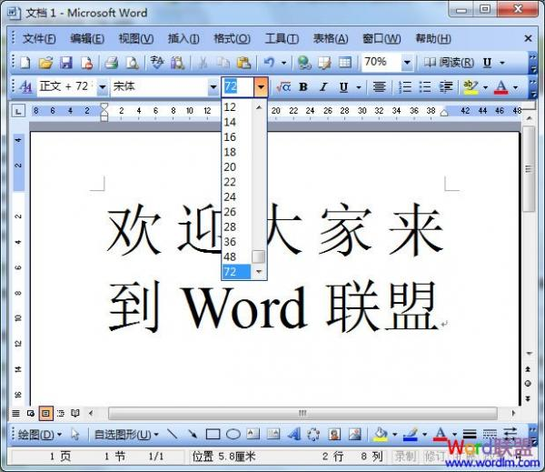 Word2003放大字体的三种方法