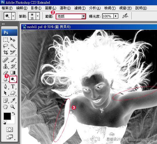 用Photoshop抠除复杂背景中的发丝