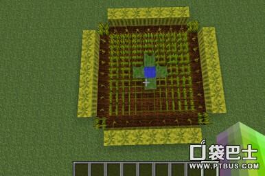 《我的世界》不同农作物增加产量种田技巧