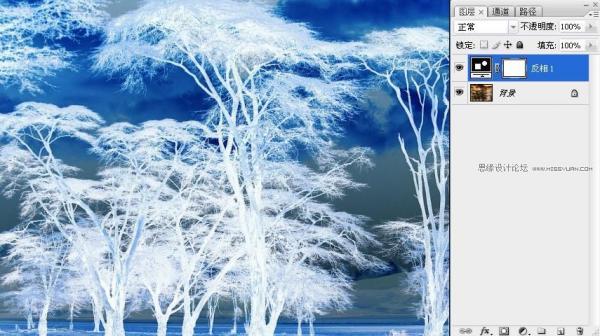 用Photoshop通道混合器给树林抠图