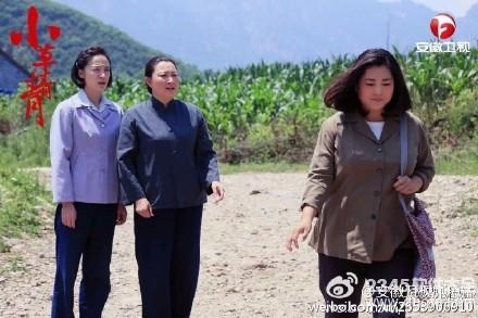 小草青青电视剧全集(1-55)_小草青青在线观看第51集