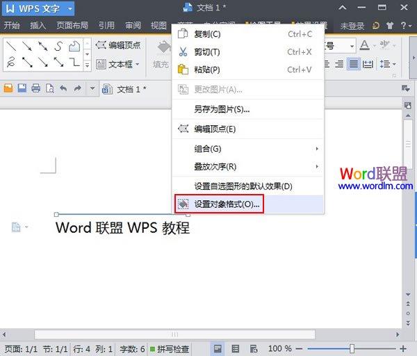 一起看一看吧!WPS文字2013上划线和下划线的添加方法