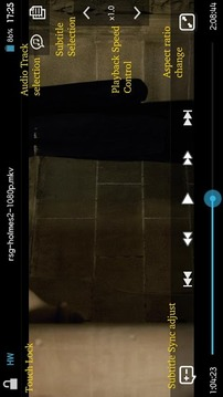 DicePlayer播放器软件截图3